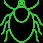 Infekcje odkleszczowe